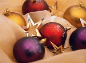 Make & Take Ornaments @ Cedar springs Public library | Cedar Springs | Michigan | United States