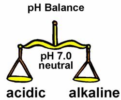 ph-balance-scales