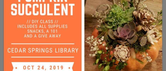 Pumpkin Succulent DIY Adult Program